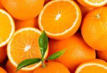 فوائد تناول البرتقال على الريق
