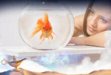 تفسير حلم عضة السمكة